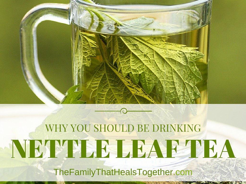 The Benefits of Drinking Nettle Leaf Tea - The Family That Heals Together