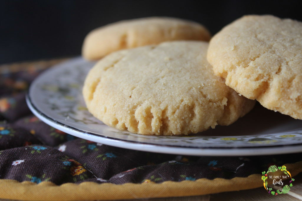 Paleo Biscuits: Nut-Free with An AIP Option   The Family That Heals Together