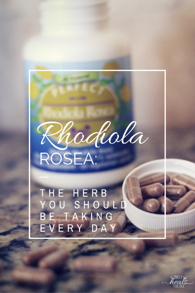 Rhodiola Rosea: The Herb You Should Be Taking Every Day | The Family That Heals Together