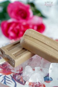 Fudgesicle Recipe with GAPS, Paleo, & Keto Options | The Family That Heals Together