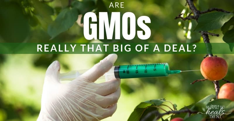 Are GMO Dangers Really THAT Big Of A Deal? | The Family That Heals Together